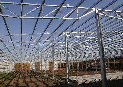 carpenteria01-big